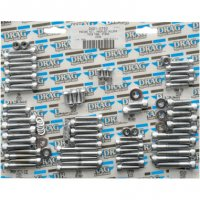 COMPLETE MOTOR SET BOLTS CHROME
